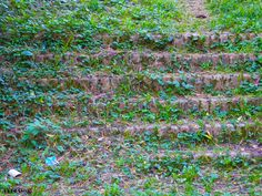Tomb Stairs II by Ultras035 on 500px