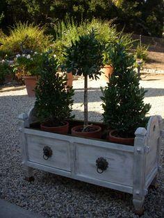 DIY inspired by Restoration Hardware planters