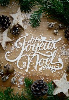 "Christmas Greetings - Joyeux Noel- paper cut designed by Camilla Anchisi for ""I… Merry Little Christmas, Noel Christmas, Christmas Greetings, Winter Christmas, All Things Christmas, Christmas Paper, Christmas Ideas, French Christmas, Christmas Scrapbook"