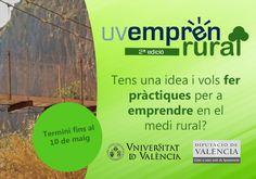 Tens una idea innovadora i vols fer pràctiques d'emprenedoria rural? Vegetables, Food, Innovative Products, Essen, Vegetable Recipes, Meals, Yemek, Veggies, Eten