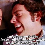Chuck Bartowski Quotes Tumblr Ladybugs #chuck #bartwoski