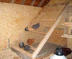 the roost is made on a slope, enclosed with poultry wire to keep the chickens out of the mess