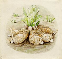 Original Beatrix Potter artwork from the British Museum