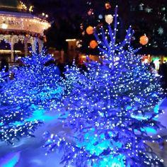#Christmastime #christmastree #sapindenoel #sapinbleu