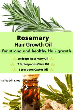 Why Use Rosemary Oil for Hair Growth (Helps with Androgenic Alopecia ) - hair buddha