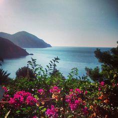 Beautiful #Bonassola #CinqueTerre #Liguria Cinque Terre, River, Outdoor, Beautiful, Outdoors, Outdoor Games, Outdoor Life, Rivers
