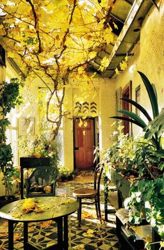 gold and green and yellow outdoor garden patio with tile floor and table