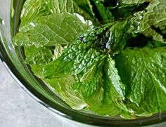 Mojito, Lettuce, Spinach, Cabbage, Food And Drink, Vegetables, Drinks, Diy, Syrup