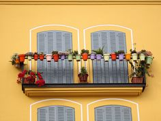 Hang pots in a variety of colors around the railing of your apartment balcony for a fun, whimsical balcony garden. - All About Gardens Spanish Garden, Balcony Doors, Apartment Balconies, Flower Pots, Flowers, Living Styles, Garden Design, Diys, Backyard