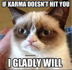 Tardar Sauce, aka the Grumpy Cat, has become an Internet sensation. Here are the best Grumpy Cat meme moments. Grumpy Cat Quotes, Gato Grumpy, Funny Grumpy Cat Memes, Funny Animal Jokes, Cute Funny Animals, Funny Animal Pictures, Funny Relatable Memes, Funny Cats, Funny Grumpy Cats