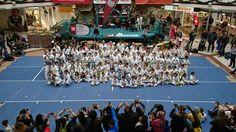 Herbst Turnier 2016 Taekwondo, Basketball Court, Sports, Autumn, Hs Sports, Sport, Tae Kwon Do