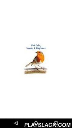Bird Calls, Sounds & Ringtones  Android App - playslack.com ,  Genieten van de geluiden van de natuur! Het gevoel alsof je in het bos ver weg van het lawaai van de steden. Get Bird Calls, Sounds & Ringtones app voor je Android telefoon of tablet en luister naar de beste dierengeluiden.Deze app is zowel leuk als leerzaam, want je kunt leren hoe je de geluiden van elk soort vogel te onderscheiden. Stel enkele van hen als een ringtone, geluid kennisgeving of alarm en je zal nooit de moeite…