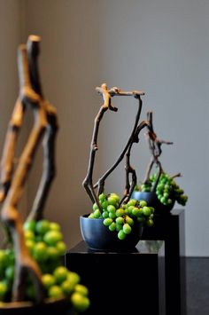 Chic Oriental Inspired ARRANGEMENT: Green Grapes + Twigs in Bowl.