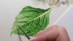 Painting a textured leaf using watercolor.