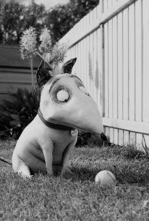 There is a lot of talk about, 'Frankenweenie' coming to cinemas in 2012. Another of Tim Burton's creatively (quirky) twisted tales. . . Personally i cant wait!
