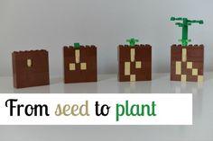 Lego plant growth model