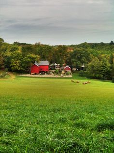 New Jersey farm / open pastures / red barn / hay field