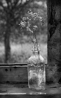 Bottle on Window Sill. Photo by Norma Warden Photography. Country Charm, Country Life, Country Living, Country Style, Modern Country, Country Decor, Rustic Decor, Wabi Sabi, Bouquet Champetre