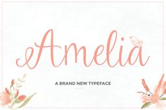 Not free but only $12 – Amelia Script (50% OFF) by Maroon Baboon on Creative Market