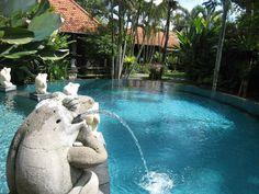 Villa Sonia Ubud Bali