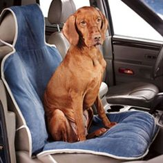 Bowsers Padded Car Seat Cover - Your furry friend can ride along in style with the Bowsers Padded Car Seat Cover protecting your seat from the fur and mess. Fitting any seat with its. Pet Car Seat Covers, Dog Car Seats, Vizsla, Dog Sofa Bed, Dog Beds, Pet Gate, Pet Feeder, Pet Travel, Travel Items