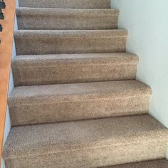 Eco Carpet Pro provide the best #services for #residential needs as well as #industrial #buildings. Our safe guard protection will ensure that you can easily remove stains that the #carpet gets after you have used our #services. Our environment friendly #techniques will be safe for you, your family and your pets. http://ecocarpetpro.com/