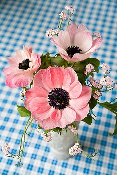 Find useful gardening tips and articles at http://www.thebloomingoasis.com  Gingham & Blooms - Think Spring!
