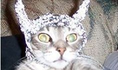 Looking for a good tin-foil hat? (In Honor of July 2, World UFO Day)
