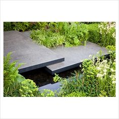 GAP Photos - Garden  Plant Picture Library - Polished concrete pads form stepping-stones across stream in 'The Lands End Across the Pond Garden' - Gold Medal Winner, RHS Chelsea Flower Show 2011 - GAP Photos - Specialising in horticultural photography