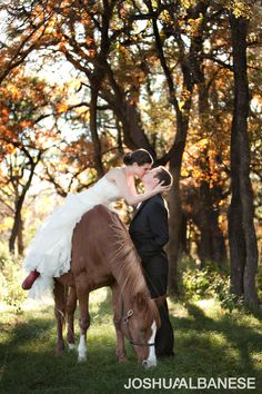 My precious Quarter Horse will definitely be a part of my wedding pictures! Horse Wedding, Wedding Engagement, Dream Wedding, Wedding Wishes, Wedding Pictures, Wedding Ideas, Wedding Stuff, Engagement Photography, Wedding Photography