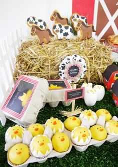 Barnyard Farm Birthday Party...love the eggs!! - cake pop eggs in cartons...so cute:)