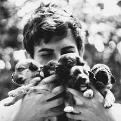 cute boy holding puppies