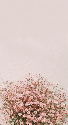 fond d& flores IPhone Background Pictures, Spring - Inside Korea J . Wallpaper Pastel, Frühling Wallpaper, Floral Wallpaper Iphone, Spring Wallpaper, Aesthetic Pastel Wallpaper, Tumblr Wallpaper, Iphone Backgrounds, Aesthetic Wallpapers, Wallpaper Backgrounds