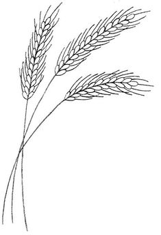 wheat stalks - embroidery design