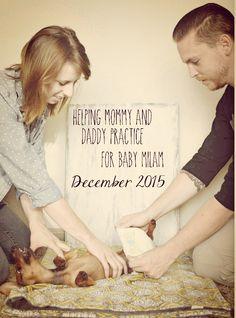 http://milamadventures.blogspot.com  Baby Announcement | with dog | pregnancy announcement