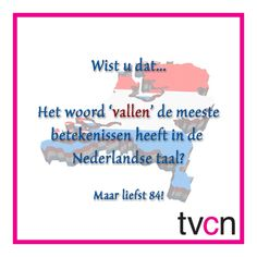 #Taalweetjes | TVcN Tolk- en Vertaalcentrum Nederland #nederlandsetaal