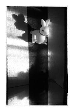 STUFF in my room - series