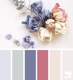 Cream or pale green walls, rose or blue carpet and rose or blue towels.