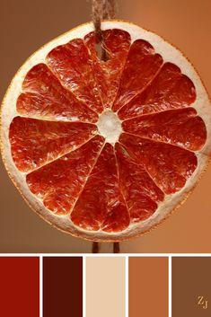ZJ Colour Palette 638 #colourpalette #colourinspiration