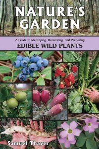 Amazon.com: Natures Garden: A Guide to Identifying, Harvesting, and Preparing Edible Wild Plants (9780976626619): Samuel Thayer: Books
