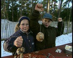Schooltv: Vogels helpen in de winter - Op wat voor manieren kun je vogels in de winter helpen?