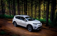 Download wallpapers Toyota RAV4, 4k, 2018 cars, forest, crossovers, new RAV4, offroad, Toyota