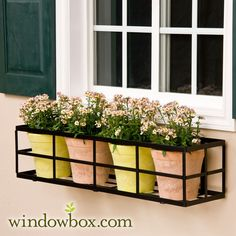 Pick our 24 Inch Simple Elegance window box cage. The square design means you can place pots or a window box liner inside and achieve stunning results.