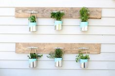 DIY Paint Can Herb Garden - I wanted to create an easy and inexpensive herb garden so I used old paint cans, spray paint, rope, dock cleats and a couple pallet…