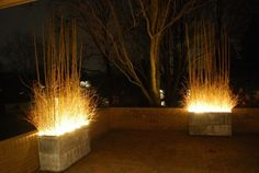 Lights in an outdoor container with bamboo sticks....makes the perfect ambience light.