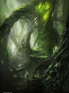 forêt - arbre vie