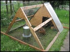 small-chicken-coop-design (this site has free design plans)