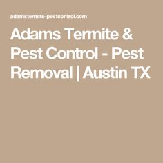 Adams Termite & Pest Control - Pest Removal | Austin TX