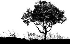 Free Image on Pixabay - Trees, Landscape, Silhouette Free Pictures, Free Images, Landscape Silhouette, Scroll Saw Patterns, Nature, Outdoor, Google, Outdoors, Outdoor Games