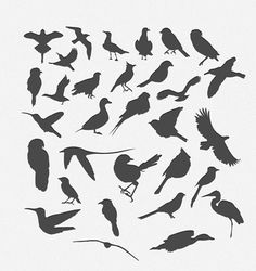 30 Bird Silhouttes Pack Vector - Free Vector Site | Download Free Vector Art, Graphics http://freevectorsite.com/30-bird-silhouttes-pack-vector/